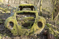 Ohne Moos nix los (notanaddict321) Tags: auto vw käfer beetle car oldtimer old moos verlassen urbex urbanexploration urban nature abandoned abadonedplaces wald lost rost