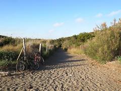 lascia la bicicletta e tuffati! (giòvanna) Tags: toscana cecina spiaggia macchiamediterranea