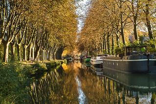 Automne, Canal du Midi, Péniche, Toulouse27102016-IMG_4394