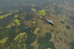 Mohanonda river! (ashik mahmud 1847) Tags: river bangladesh d5100 nikkor water boat people man working texture