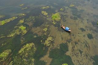 Mohanonda river!