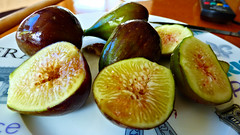 Beautiful figs (Sandy Austin) Tags: panasoniclumixdmcfz70 sandyaustin massey westauckland auckland northisland newzealand fruit figs