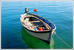 Ligurian goiter (Andrea Macherelli Bianchini) Tags: gozzo fezzano portovenere liguria provinciadilaspezia italy italia goiter mare sea fishing
