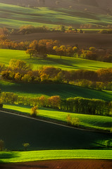 """""""Playing with Sunlight"""" (emanuelezallocco) Tags: sunlight sunset light shadow beauty spring hills landscape green golden hour gold pentax ricoh tamron"""