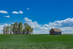 Rural School Weld County (Bridget Calip - Alluring Images) Tags: 2017 alluringimagescolorado billowingclouds bridgetcalip colorado dustbowl easternplains greatdepression kiowacreek weldcounty woodenschoolhouse allrightsreserved blueskies copyrighted dustyroads interior lifeontheplains oneroomschoolhouse prairie prairieschool schoolhouse wheatfields