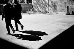 two shadows (gato-gato-gato) Tags: 35mm ch contax contaxt2 iso400 ilford ls600 noritsu noritsuls600 schweiz strasse street streetphotographer streetphotography streettogs suisse svizzera switzerland t2 zueri zuerich zurigo z¸rich analog analogphotography believeinfilm film filmisnotdead filmphotography flickr gatogatogato gatogatogatoch homedeveloped pointandshoot streetphoto streetpic tobiasgaulkech wwwgatogatogatoch zürich black white schwarz weiss bw blanco negro monochrom monochrome blanc noir strase onthestreets mensch person human pedestrian fussgänger fusgänger passant sviss zwitserland isviçre zurich autofocus