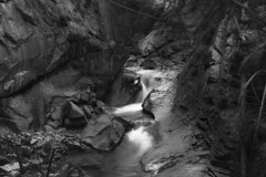 Val Genova - Forra (albertobregani) Tags: valgenova parcoadamellobrenta waterfalls cascate canyons acqua water forra trentini montagna mountains