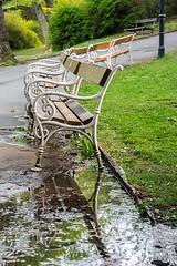 Benches... (Gorky1985) Tags: wien vienna bench bank austria park reflection green cosic colors goran türkenschanzpark nikon nikkor 18105 d5300 landscape landschaft natural street