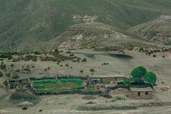 _Q9A2895 (gaujourfrancoise) Tags: bolivia bolivie gaujour andes altiplano highlands hautsplateaux green vert islands îles salardeuyuni saltflat desert