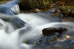 File le temps (Marc ALMECIJA) Tags: pose longue long exposure brassac tarn water eau ruisseau river sony rx10 nature natur