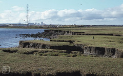 Active erosion East of River Rhymney mouth, 09/11/78 (Mary Gillham Archive Project) Tags: 09111978 lamby landscape st2277 wales water 1978 27120 cardiff