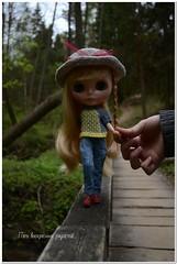 Скрип деревянного мостика в лесу