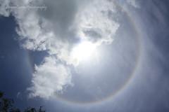 Cerchi (Simo_SCRIC_Corrao Eagle Eye79) Tags: alonesolare solarhalo miami canon miamibeach sun sole sky