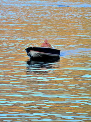 [ Navigando nell'oro - Sailing in gold ] DSC_0287.3.jinkoll (jinkoll) Tags: sea boat man elderly alone solitude mare water reflections sailing minimal colors gradient gloaming blue orange scilla calabria scylla people sit sitting seated