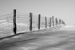 Fence B&W (tomcanon68) Tags: canon40d canon canon70300 canon70300mmf456isii snow fence bw blackandwhite monochrome winter lancastercounty