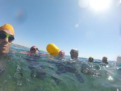 G0138122 (Visit Pilar de la Horadada) Tags: swimmers meeting point hibernismare swim natación nadar milpalmeras pilardelahoradada alicante costablanca vegabaja comunidadvalenciana quedada beach strand swimm