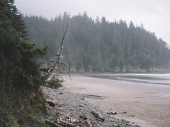 short sands beach -- oregon coast (Brennan Anderson) Tags: landscape 63mmf28 fujigfx fujifilm fuji pacificnorthwest oregoncoast shortsandsbeach oregon