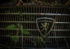 DSC_4291 (Foto-Runner) Tags: urvbex lost decay abandonné épaves car voitures ferme