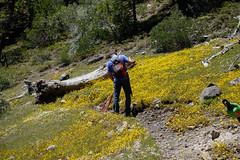 spring clean #2 (8 of 12) (singlespeeder) Tags: fta forestcity lanig mattp raking springclean yellowflowers