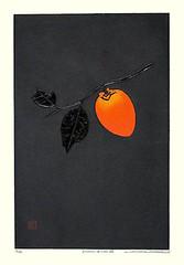 Japanese persimmon (Japanese Flower and Bird Art) Tags: flower persimmon diospyros kaki ebenaceae haku maki modern woodblock print japan japanese art readercollection