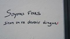 fous ou dingues ? (YOUGUIE) Tags: paris streetart message fou dingue