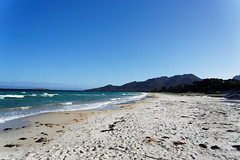 20170414-06-Hazards Beach (Roger T Wong) Tags: 2017 australia freycinet freycinetnationalpark hazardsbeach np nationalpark rogertwong sel2470z sony2470 sonya7ii sonyalpha7ii sonyfe2470mmf4zaosscarlzeissvariotessart sonyilce7m2 tasmania beach bushwalk camp clouds hike ocean outdoors sand sea sky tramp trek walk
