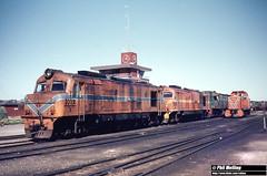 1301 X1012  X1028 B1608  RA1906 Forrestfield Loco Depot 16 August 1980 (RailWA) Tags: railwa philmelling x1012 x1028 b1608 ra1906 westrail forrestfield 1980