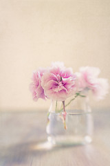 Sweet pink (RoCafe Off for a while) Tags: lensbaby stilllife sweet50 flowers pink vase soft pastels textured romantic nikond600