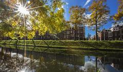 Autumn leaves (JoCo Knoop) Tags: utrecht catharijnesingel autumn herfst flare