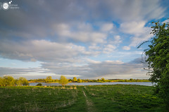 Path to the river (Robert Stienstra Photography) Tags: landscape landscapes landscapephotography landschappen uiterwaarden riverbanks riverscape riverrhine riverscapes riverside clouds sky skies skyscape wageningen nikond7100 tokina1224mm robertstienstraphotography outdoor waterscape waterscapes waterfront