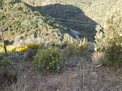 High above the road (amgirl) Tags: elbierzo morning spain 2017 riegodeambostomolinaseca road montesdeleon april19 day21 caminodesantiago