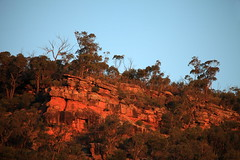 Sunset on the Cliffs (Darren Schiller) Tags: weddinmountainsnationalpark australia cliffs evening landscape ridge rocks sunset bush newsouthwales nature escarpment