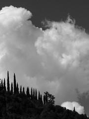 hh-1000167-2 (alessandromagagna1) Tags: toscana tuscany italy primeval photography