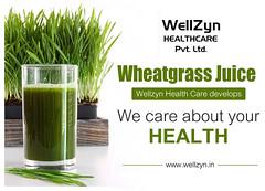 Wellzyn-health-care