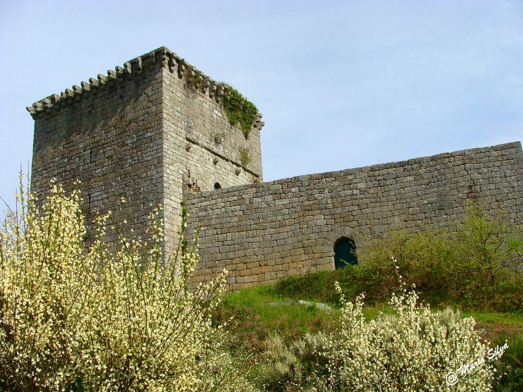 Águas Frias (Chaves) - ... as giestas brancas e o Castelo de Monforte de Rio Livre ...