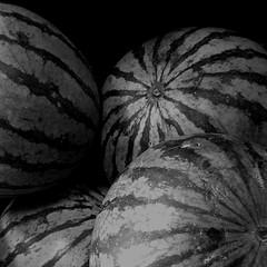 Sandías ByN / B&W Watermelon (ix 2017) Tags: israfel67 méxico mexico cuernavaca morelos sandía watermelon byn bw square cuadrada sandías