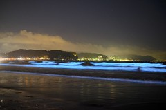 光る波 (YouMiz) Tags: 海 夜光虫 japan noctiluca 材木座海岸 sea 波 鎌倉 日本 wave 由比ヶ浜 神奈川