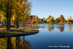 Autumn reflections across the lake (Anna Calvert Photography) Tags: australia canberra lakeburleygriffin travelphotography autumn autumncolours landscape landscapephotography nature trees water reflections