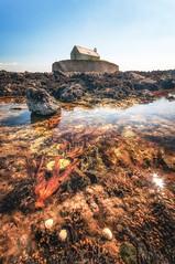 The rock pool (Einir Wyn Leigh) Tags: water coast rock pool ocean church anglesey colour nature life happy outdoor may spring season wales cymru shells blue sunshine sunlight vibrant nikon