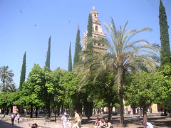 Mezquita-Cathédrale (archipicture71) Tags: quint charles alhakam alrahman abd baroque renaissance wisigothique cordoue cordoba catedral mezquita cathedral mosque cathédrale tour alminar minaret tower torre campanario patio naranjos cour orangers oranges court