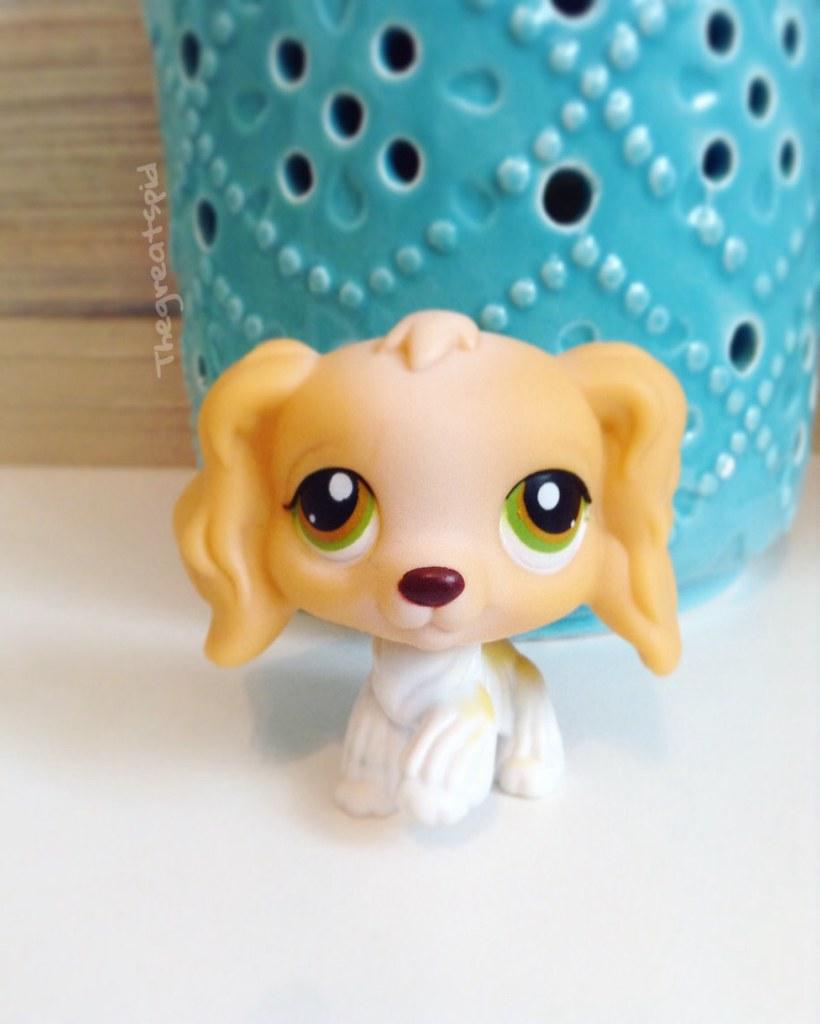 Littlest Pet Shop LPS Penguin Family Penny animal hasbro Figure kid boy doll toy
