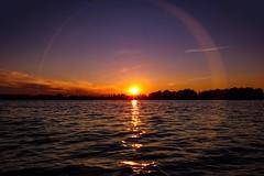Lake fever (gerd kozik) Tags: april spring cypress moos calm silence watersports passion kayaking gerdkozik yarinasanth sun rays sky purple sunset sundown board red naish radolfzell höri mettnau sup paddling lakeconstance