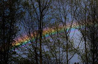 Regenbogen - rainbow (14th May 2017)