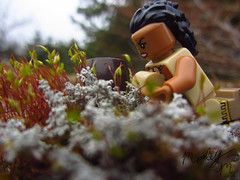 Scourging for herbs (Marley Mac) Tags: lego mini figure minifig minifigure photography herbs scourging marleymac