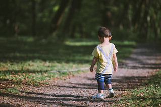 Rear view of baby boy walking on footpath in forest