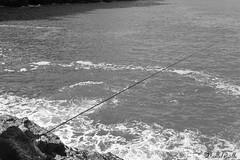 Lone fisherman (DanAie) Tags: street streetphotography bw black white blackandwhite sea old man human fisherman fishing alone lone solitude pentax ks2