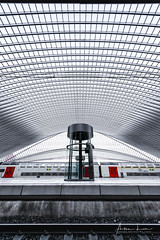 Timecapsule III (Alec Lux) Tags: architecture architecturephotography belgium calatrava design elevator escalator guillemins liège luik minimal minimalism santiago santiagocalatrava station train trainstation urban liege be