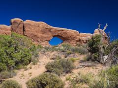 Blue Skies Over Arches (RobertCross1 (off and on)) Tags: 1250mmf3563mzuiko arches archesnationalpark em5 grand moab omd olympus southwest thewindows usa ut utah bluesky brush bush desert juniper landscape nature rock trees