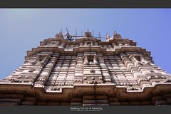 traveler : Holding On To A Meaning (tofu_minx) Tags: hatheesingh jain temple ahmedabad india asia religion worhship