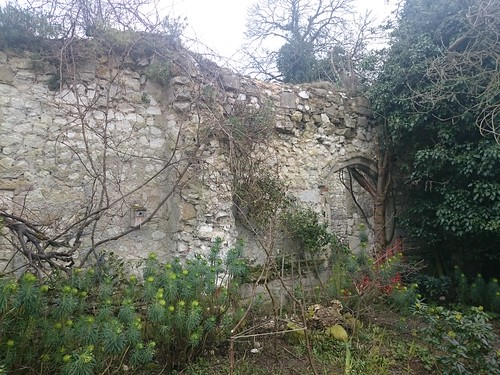 Thetford Nunnery (ruins)
